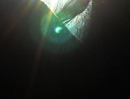 日食9.jpg
