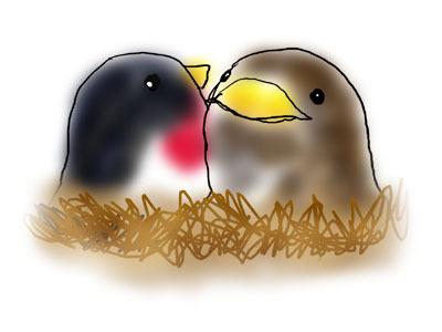 燕と雀.jpg
